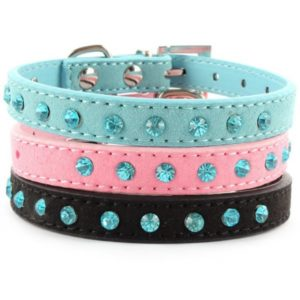 Jeweled dog collar