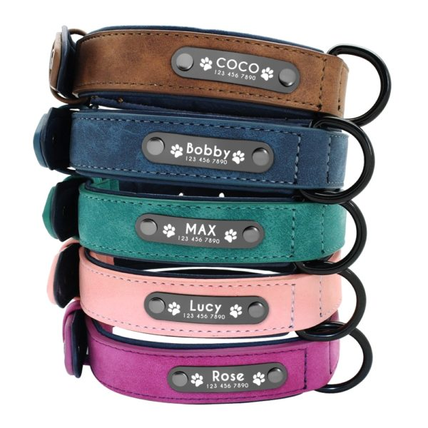 Dog collar with name